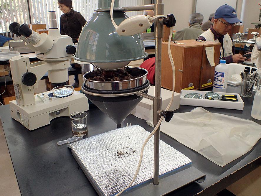 2016.12.3土壌生物研修会 北本自然学習センター_f0131669_21170523.jpg